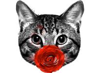 """""""Кошка с розой"""" Изображение для нанесения на одежду № 0915"""