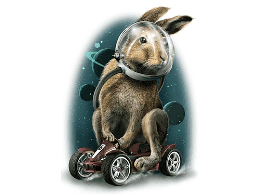 """""""Кролик на гоночной машине"""" Изображение для нанесения на одежду № 0952"""