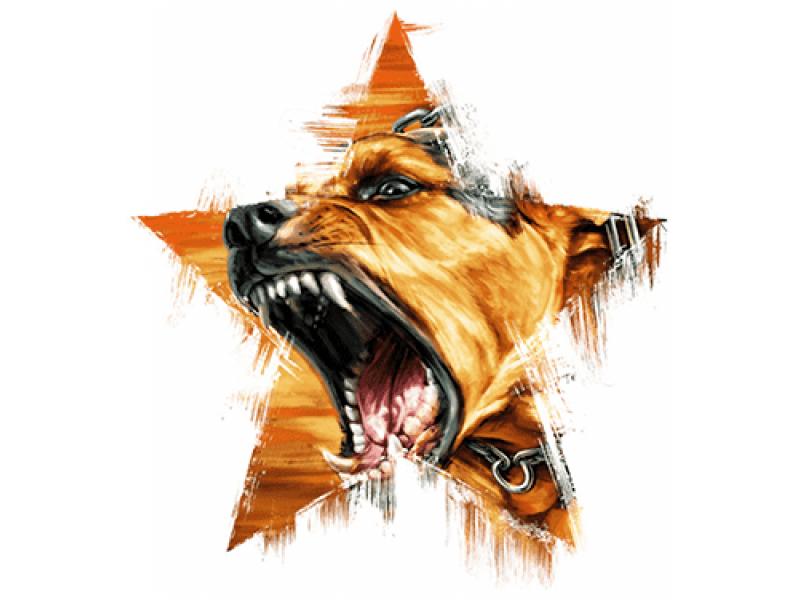 """""""Голова собаки в звезде"""" Изображение для нанесения на одежду № 0971"""