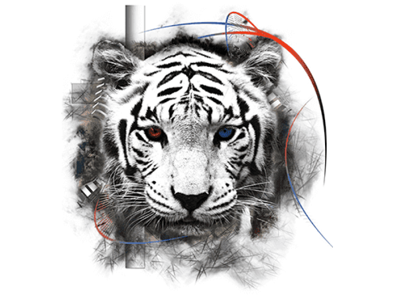 """""""голова тигра черно белая"""" Изображение для нанесения на одежду № 0983"""