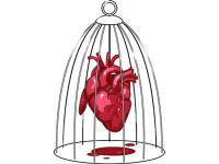 """""""Сердце в клетке"""" Изображение для нанесения на одежду № 0985"""