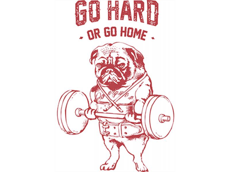 """""""GO NARD"""" Изображение для нанесения на одежду № 0990"""