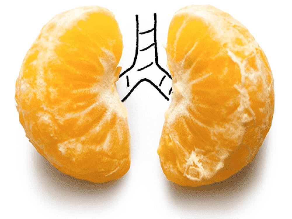 """""""легкие дольки мандарина"""" Изображение для нанесения на одежду № 0992"""