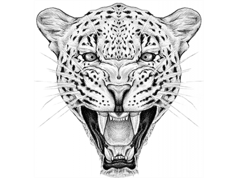 """""""Голова леопарда"""" Изображение для нанесения на одежду № 1003"""