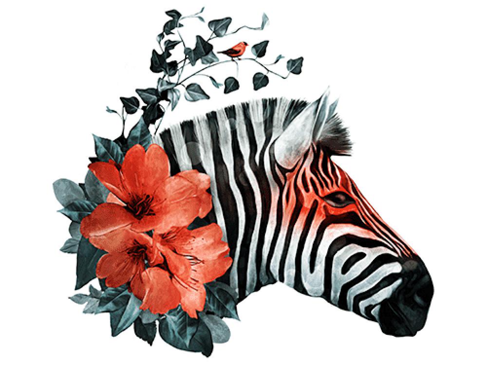 """""""Зебра с цветком"""" Изображение для нанесения на одежду № 1004"""