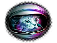"""""""Кот в скафандре голова"""" Изображение для нанесения на одежду № 1020"""
