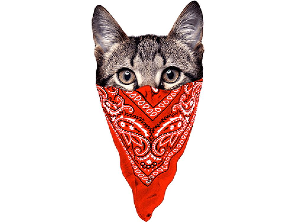"""""""Кошка с красным платком"""" Изображение для нанесения на одежду № 1043"""