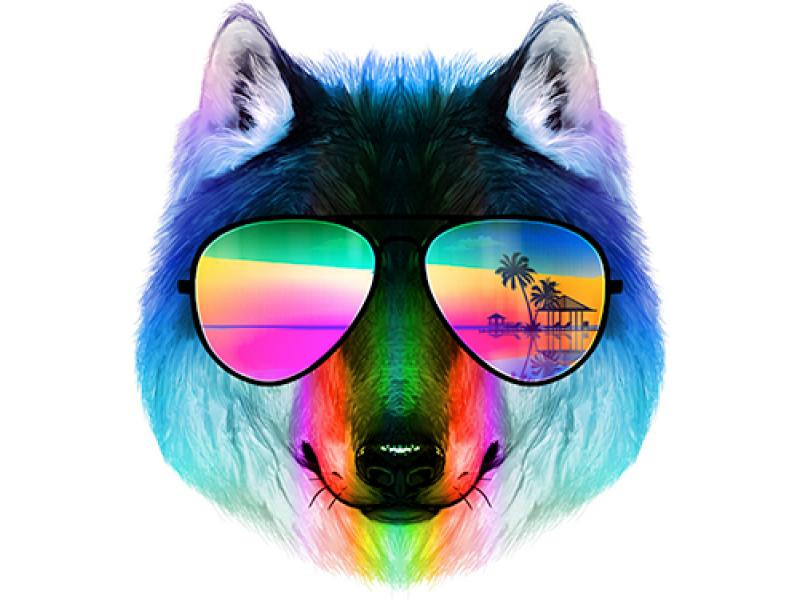 """""""Лицо собаки в цветных очках"""" Изображение для нанесения на одежду № 1044"""