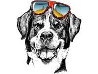 """""""Собака в очках"""" Изображение для нанесения на одежду № 1067"""