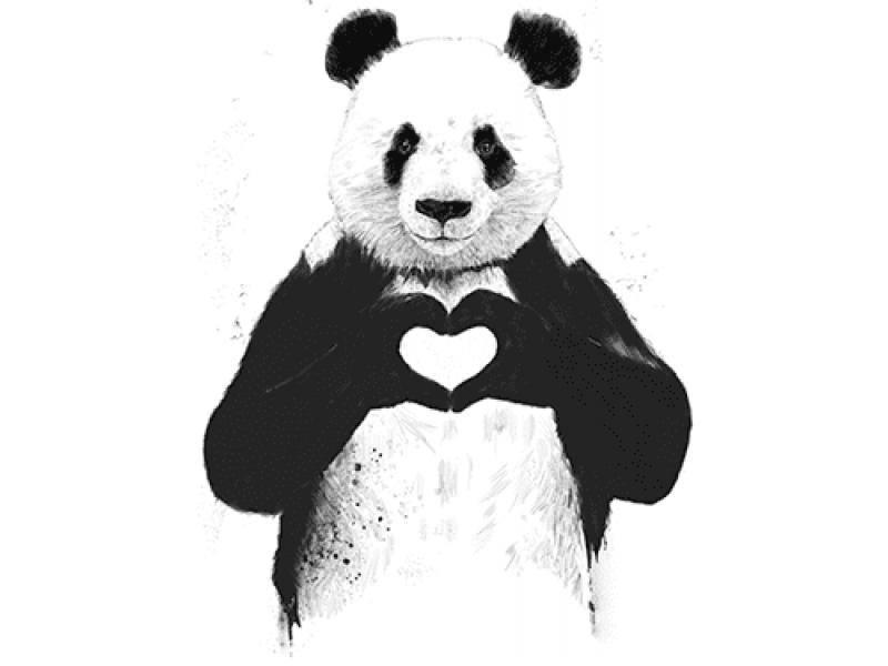 """""""Панда"""" Изображение для нанесения на одежду № 1068"""