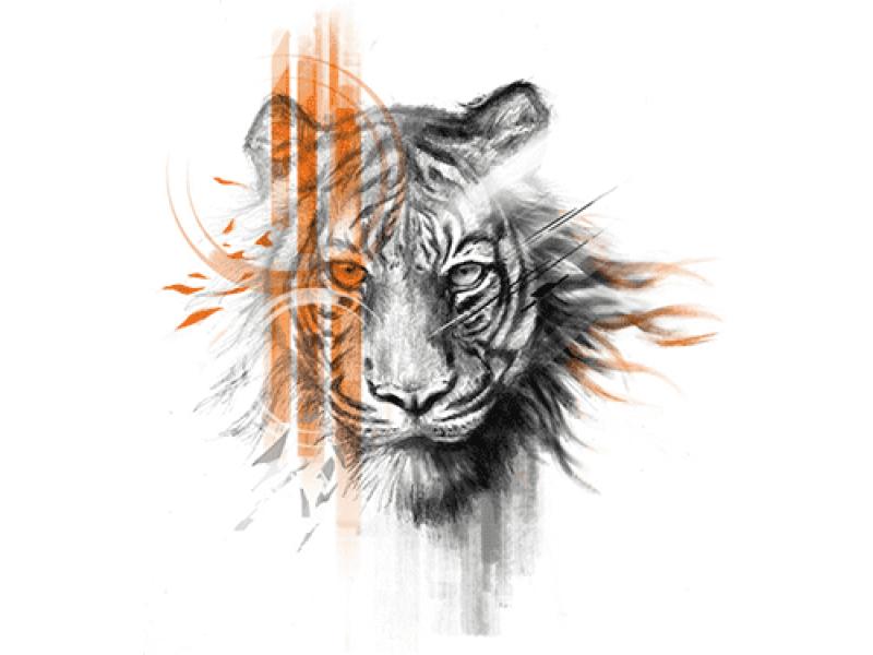 """""""Тигр голова с оранжевой полосой"""" Изображение для нанесения на одежду № 1069"""