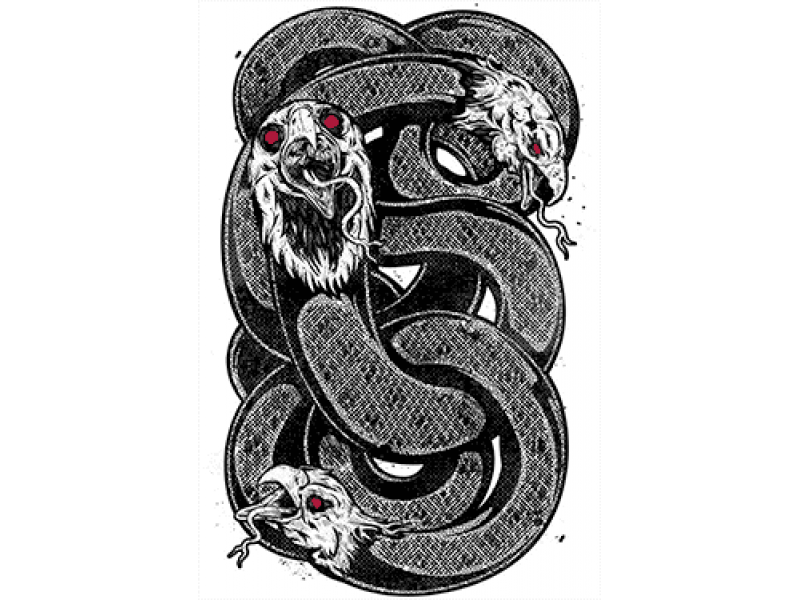"""""""Змеи с головой птицы"""" Изображение для нанесения на одежду № 1119"""