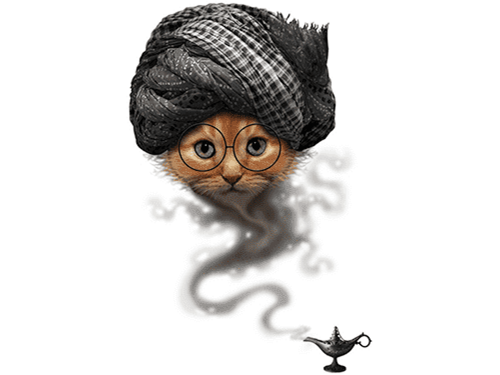 """""""Кошка джин"""" Изображение для нанесения на одежду № 1124"""