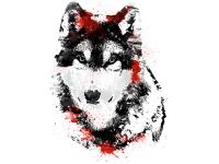 """""""Волк смотрит"""" Изображение для нанесения на одежду № 1149"""