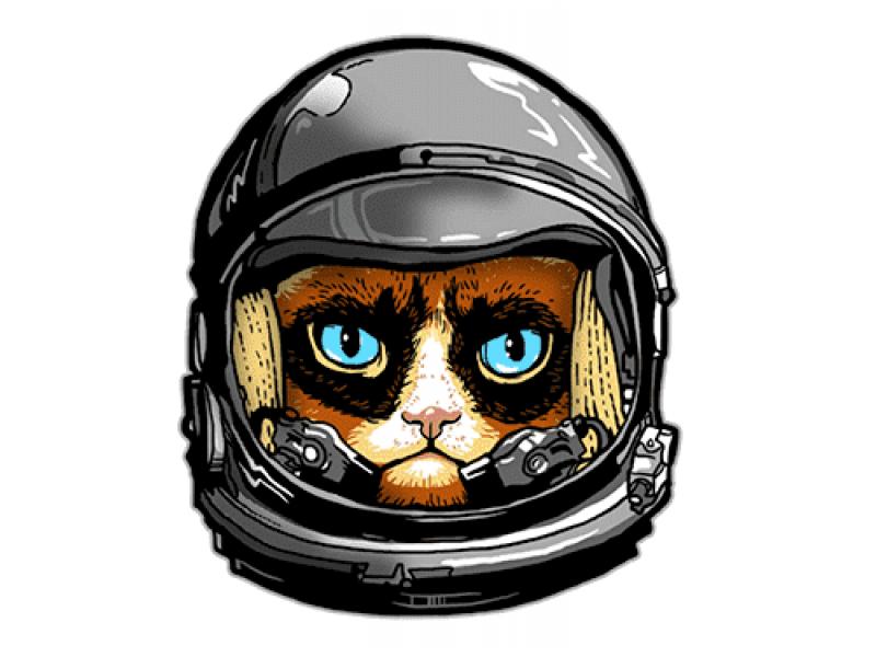 """""""Кот в скафандре с голубыми глазами"""" Изображение для нанесения на одежду № 1150"""