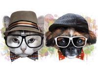 """""""Кот и собака в шляпах"""" Изображение для нанесения на одежду № 1163"""
