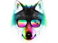 """""""Голова волка в очках и свет разный"""" Изображение для нанесения на одежду № 1173"""