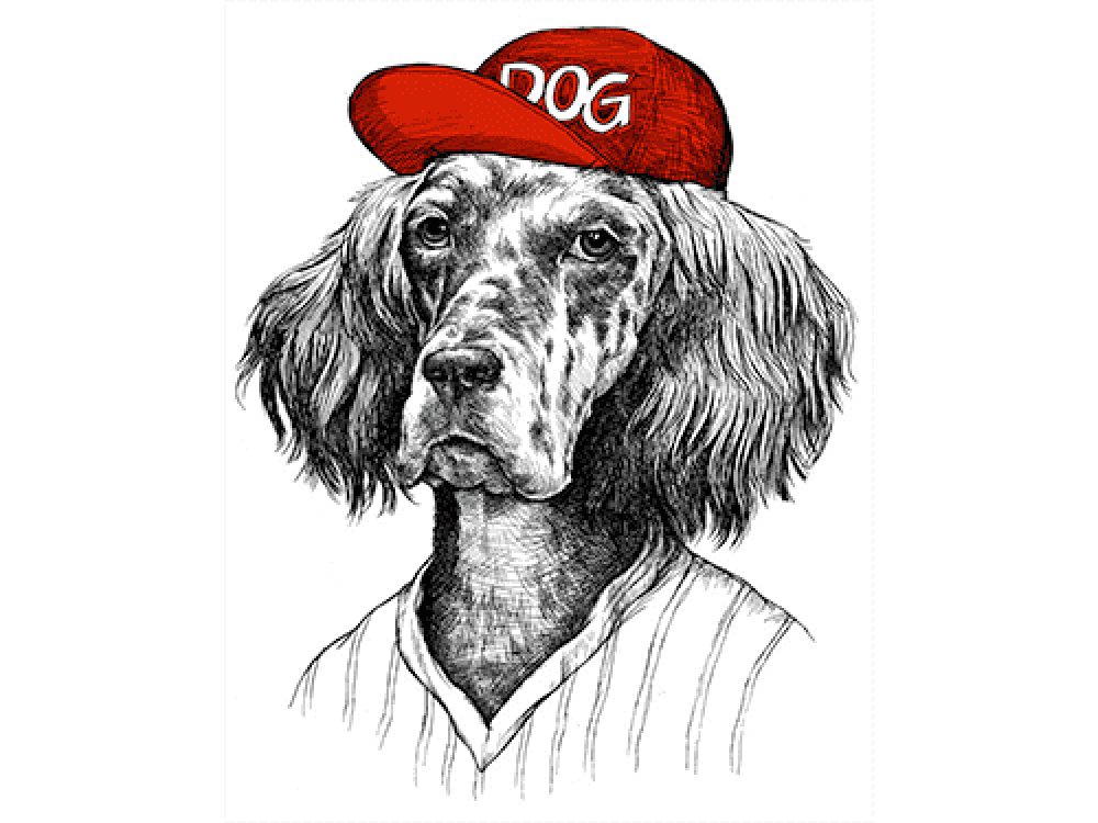 """""""Собака в красной кепке"""" Изображение для нанесения на одежду № 1191"""