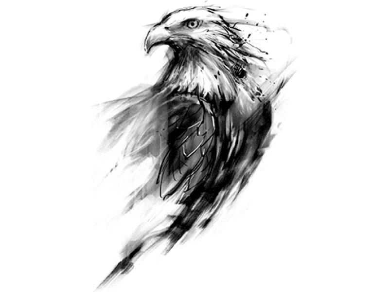 """""""Ястреб птица"""" Изображение для нанесения на одежду № 1210"""