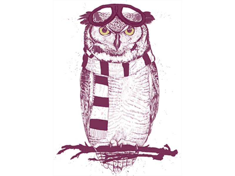 """""""Филин в шарфе и очках"""" Изображение для нанесения на одежду № 1222"""