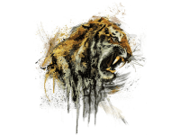 """""""Тигр злой с зубами"""" Изображение для нанесения на одежду № 1251"""