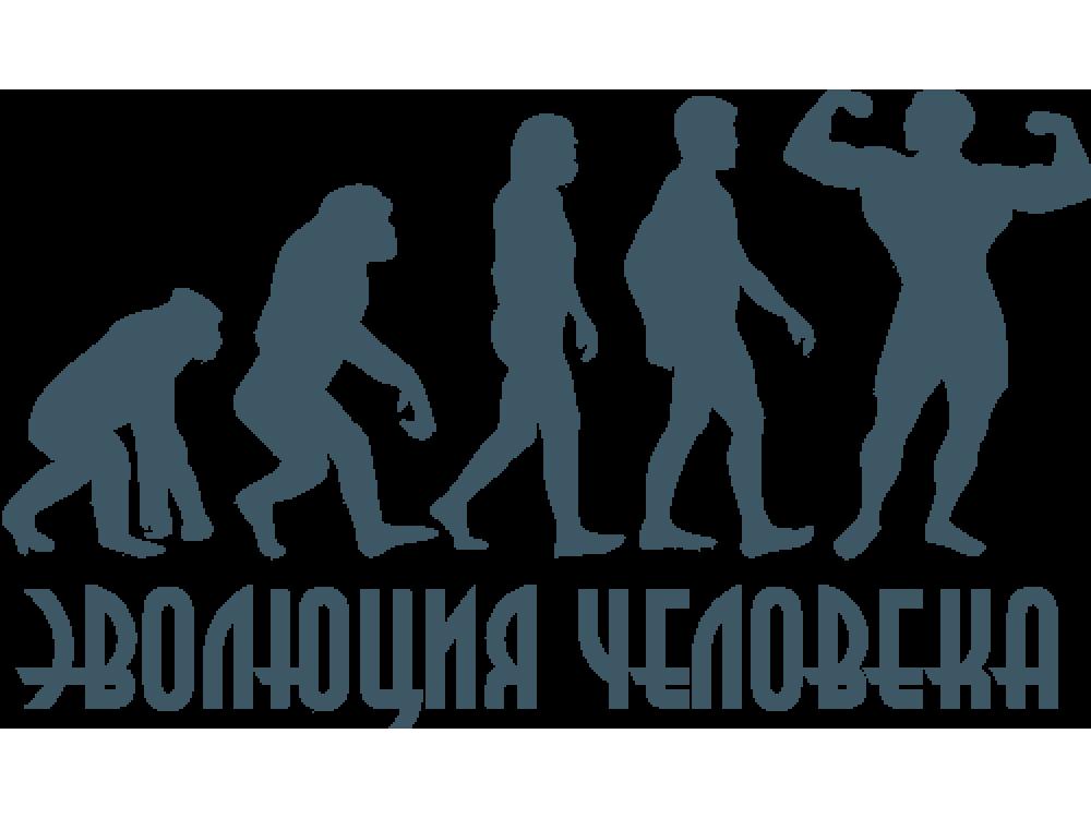 """""""Эволюция человека"""" Изображение для нанесения на одежду № 1642"""