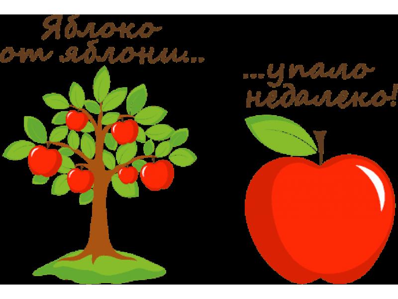 """""""Яблоко яблоня"""" Изображение для нанесения на одежду № 1859"""