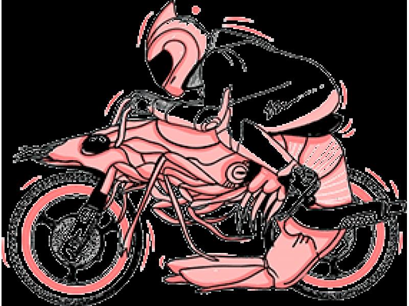 """""""Мотоциклист"""" Изображение для нанесения на одежду № 0127"""