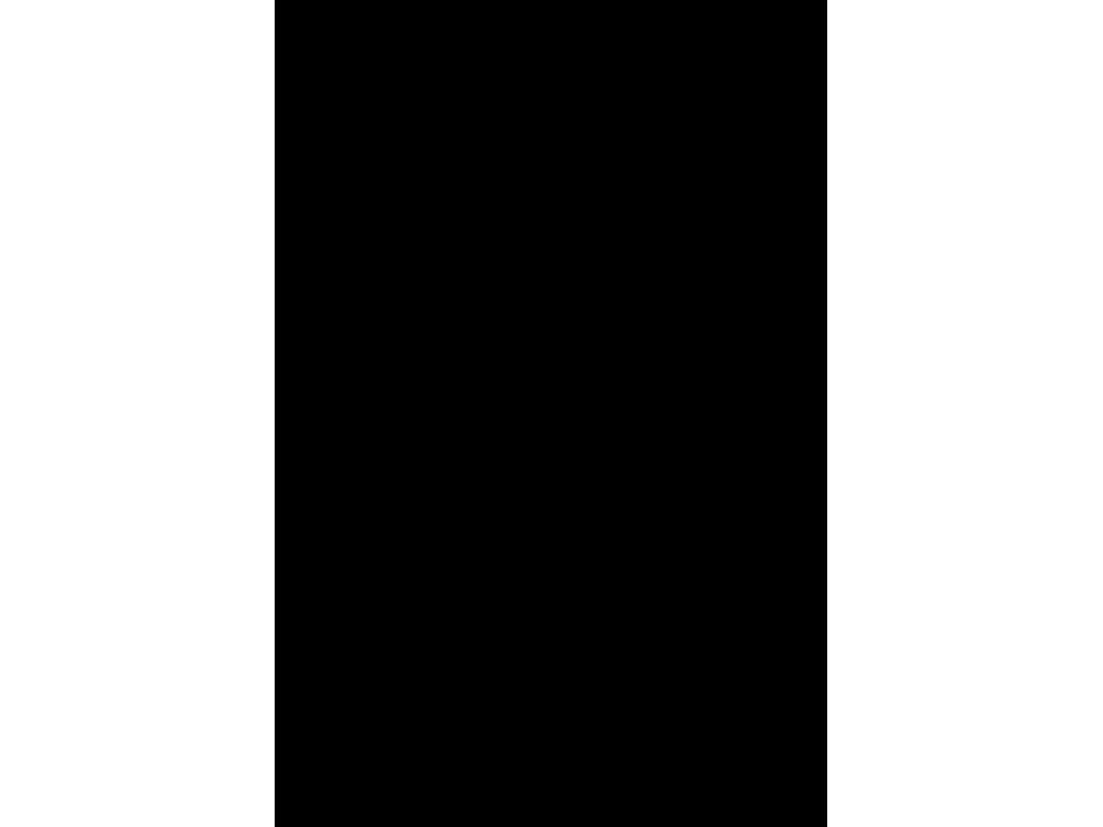 """""""Вежливые люди"""" Изображение для нанесения на одежду № 0540"""