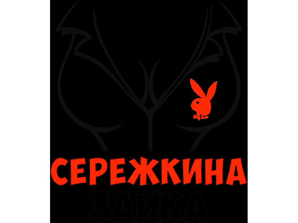 """""""Сережкина зайка"""" Изображение для нанесения на одежду № 1276"""