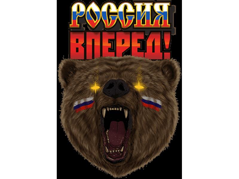 """""""Россия вперед"""" Изображение для нанесения на одежду № 0473"""