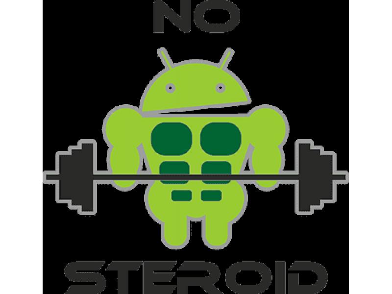 """""""NO STEROID"""" Изображение для нанесения на одежду № 0794"""