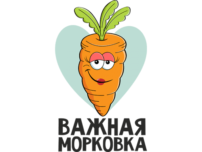 """Изображение для нанесения на одежду № 0042-2 """"Важная морковка"""""""
