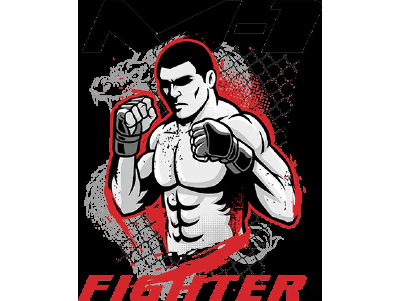 """""""Fighter"""" Изображение для нанесения на одежду № 1350"""