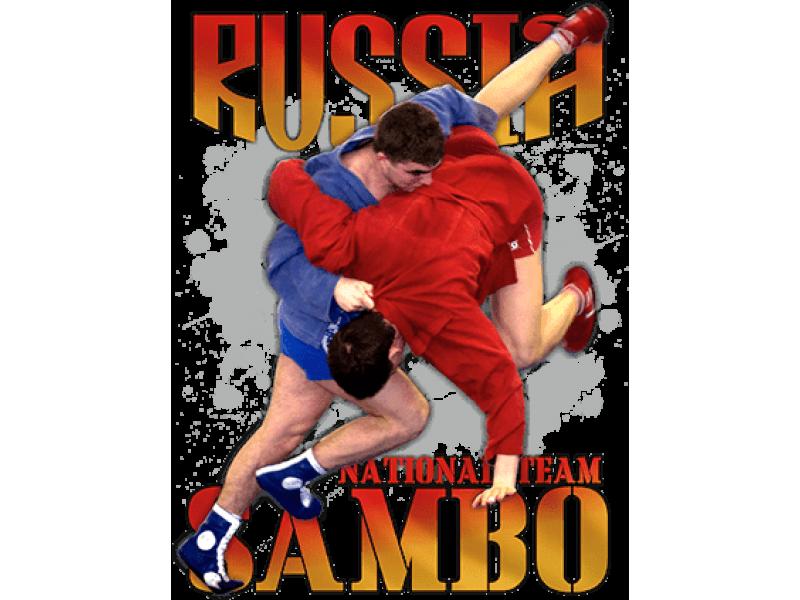 """ Russia Самбо"" Изображение для нанесения на одежду № 1351"