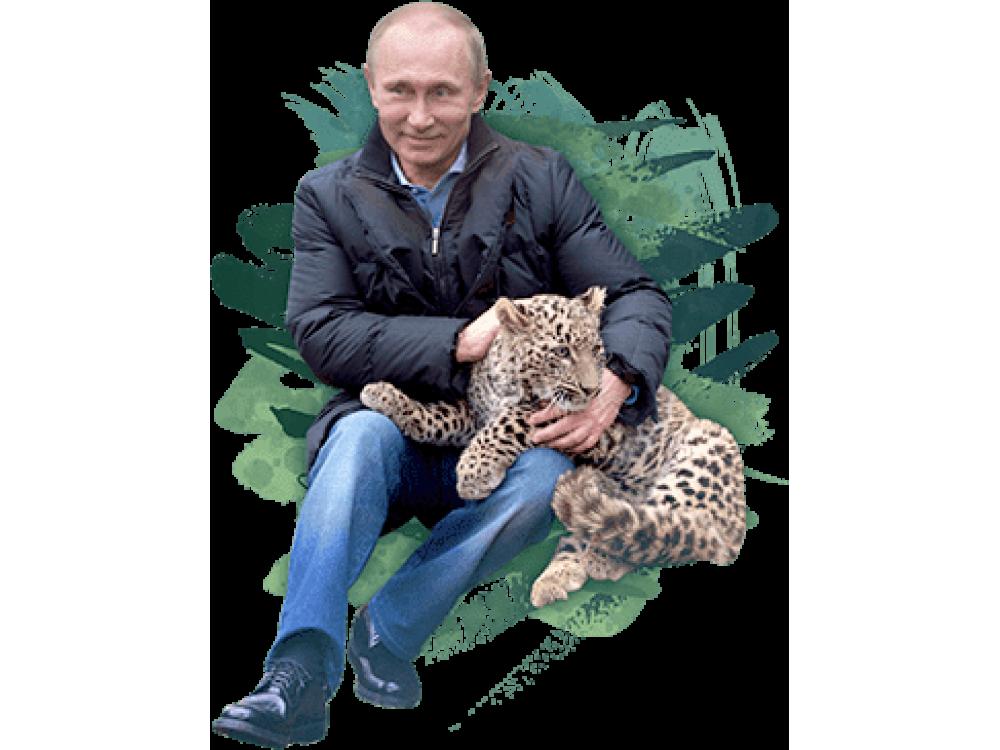 """Изображение для нанесения на одежду № 0019 """"Путин с леопардом"""""""
