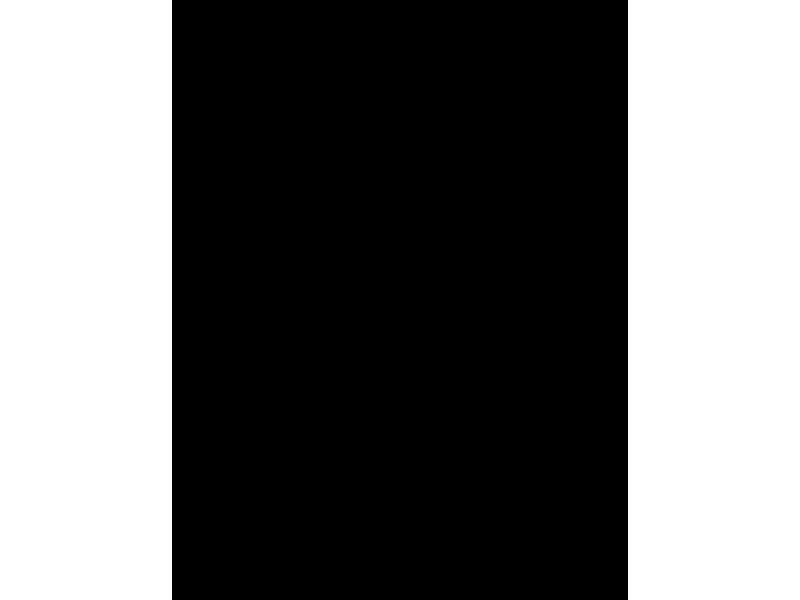 """""""Вежливые люди 1"""" Изображение для нанесения на одежду № 1700"""