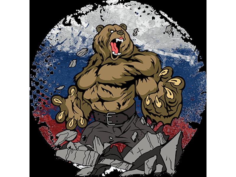 """""""Злой медведь"""" Изображение для нанесения на одежду № 1703"""