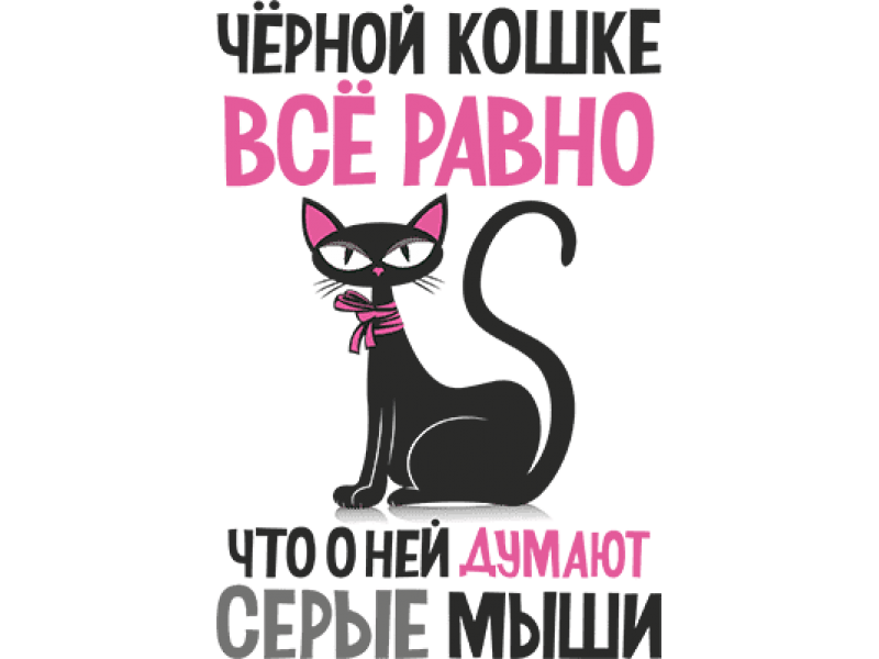 """""""Черной кошке все равно"""" Изображение для нанесения на одежду № 1620"""